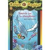 Sauvés par les dauphins!