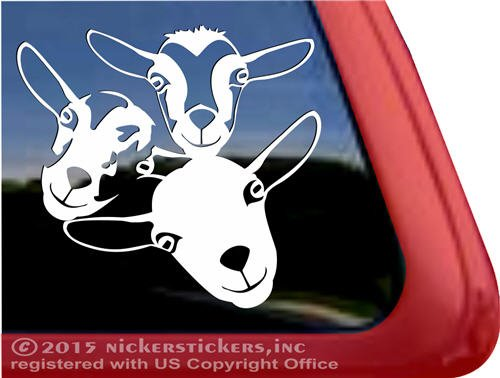 Nigerian Quality NickerStickers Window Sticker