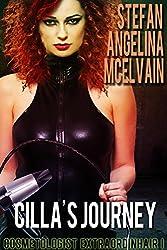 Cilla's Journey (Cosmetologist Extraordinhair Book 1)
