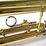 Kaerntner Trumpet KTR-30/GD Gold