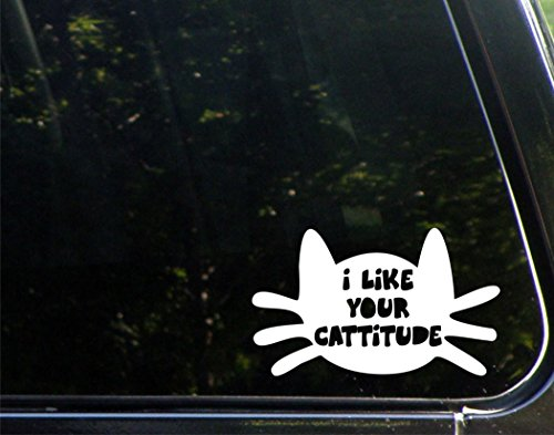 (I Like Your Cattitude - 6-1/2