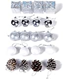 Xena 20 Piece Elegant Modern Silver White Assortment Christmas Ball Ornament Pine Cone Frozen Winter Theme Gift Box Set, 2 x 2 Inches DIY Holiday Present Party Favors Supplies Accessories