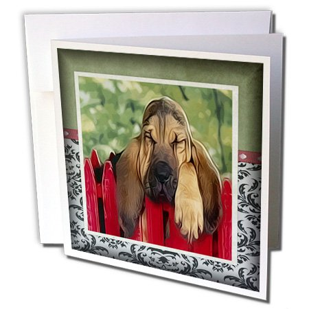 3dRose Susan Brown Designs Animal Themes - Bassett on the Fence - 1 Greeting Card with envelope (gc_36471_5) ()