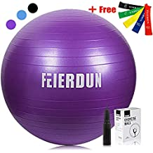 Exercise Ball Thick Anti-Burst Yoga Stability Ball (55cm 65cm 75cm)Supporting 2200lbs INCLUDED FIVE LOOP RESISTANCE BANDS for Workout, Fitness, Balance, Use for a Work Chair