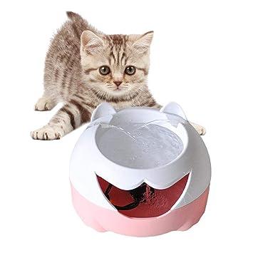 Hutiee dispensador de Agua para Mascotas, dispensador de Agua eléctrico de Tipo USB de circulación