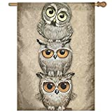 Cheap MRFANG Welcome Garden Flag Face Owls Double Sided Decorative Flags For Outdoors Best For Party Yard And Home Outdoor Decor