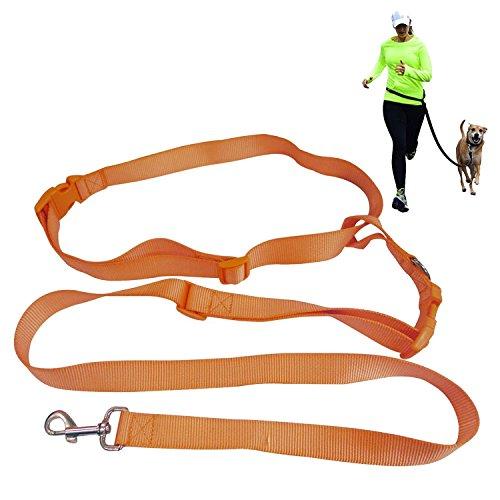 Dog Exerciser - BIBO Exerciser Premium Durable Nylon Safety Hiking Running Jogging Walking Dog Hands Free Leash For Large, Medium and Small Dogs (Orange)