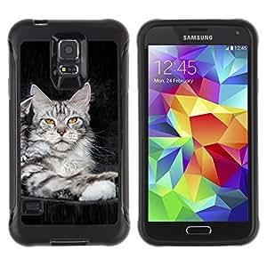 Pulsar Defender Series Tpu silicona Carcasa Funda Case para SAMSUNG Galaxy S5 V / i9600 / SM-G900F / SM-G900M / SM-G900A / SM-G900T / SM-G900W8 , koshka kotenok fon