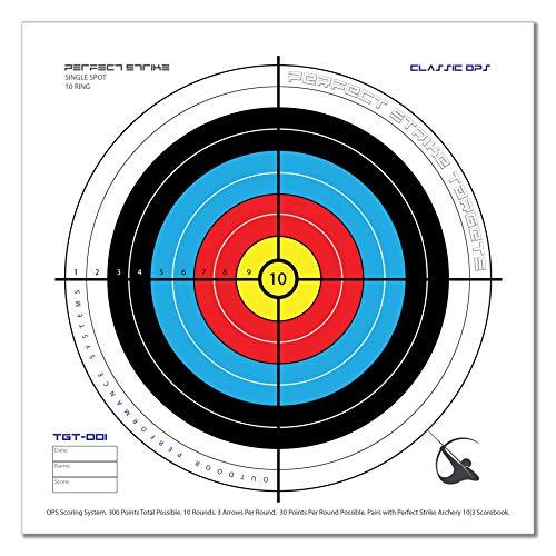 archery target system - 1