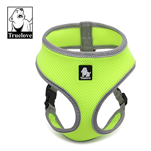 neon harness for dogs - 4