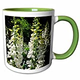 3dRose WhiteOaks Photography and Artwork - Foxglove - Field of Foxglove is a photo of a large patch of white foxglove - 11oz Two-Tone Green Mug (mug_214196_7)