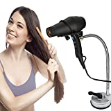 Pard Hair Dryer Stand Holder, Stainless 360 Degrees Rotation Hands Free Hairdryer Holder with Sucker, Silver