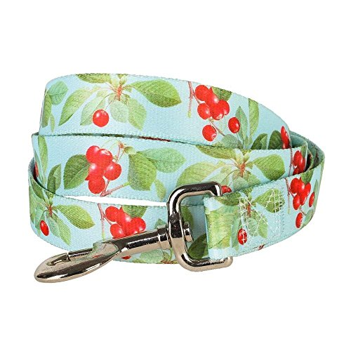 """Blueberry Pet Durable The Cherry Garden Turquoise Designer Dog Leash 5 ft x 3/4"""", Medium, Leashes for Dogs"""