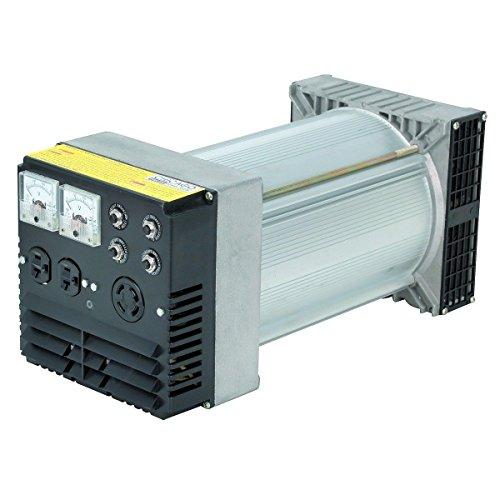 (Heavy-Duty 10000 Peak, 7200 Running Watts Belt-Driven Generator Head (3600 RPM))