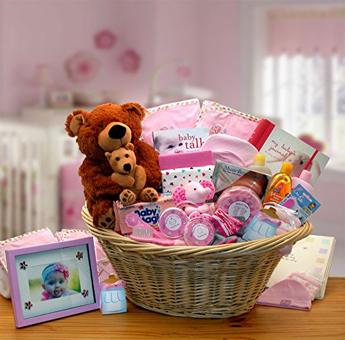 Baby Girl Gift: Welcome Home Precious Baby Basket -Pink by Organic Stores