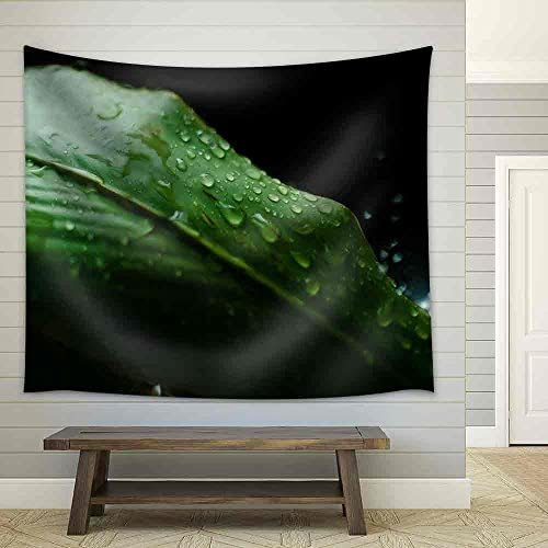 Raindrops on a Green Leaf During a Raining Fabric Wall
