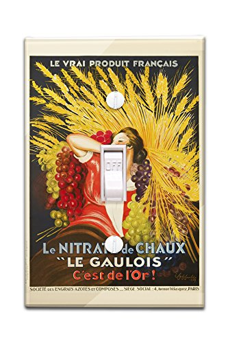 le-gaulois-vintage-poster-artist-cappiello-leonetto-france-c-1927-light-switchplate-cover