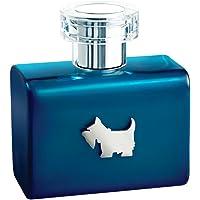 Ferrioni Blue Terrier de Ferrioni para Caballero Spray 100 ml