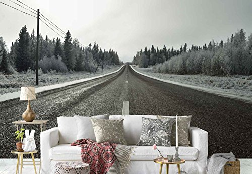 Photo wallpaper wall mural - Downwards Asphalt Road Frosty Trees - Theme Travel & Maps - L - 8ft 4in x 6ft (WxH) - 2 Pieces - Printed on 130gsm Non-Woven Paper - 1X-1248607V4 by Fotowalls Photo Wallpaper Murals