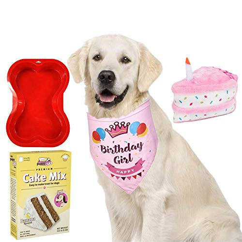Primo Lines Dog Birthday Party Supplies - Cake Mix and Frosting, Cake Stuffed Toy, Bone Shaped Cake Pan, and Bandana (Pink for Girls)