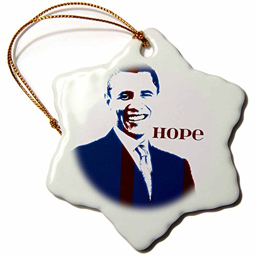 3dRose orn 50548 1 Presidents Patriotic Snowflake