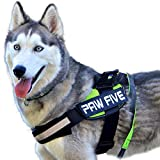 Paw Five CORE-1 No-Pull Easy Walk Reflective Dog Harness with Built-in Waste Bag Dispenser Adjustable Padded Control for Medium and Large Dogs, Check Sizing Chart Before Ordering (Small, Leaf Green)