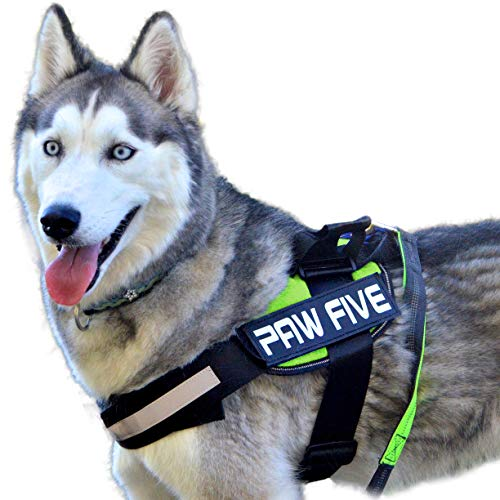 Paw Five CORE-1 No-Pull Easy Walk Reflective Dog Harness with Built-in Waste Bag Dispenser Adjustable Padded Control for Medium and Large Dogs, Check Sizing Chart Before Ordering (Large, Leaf Green)