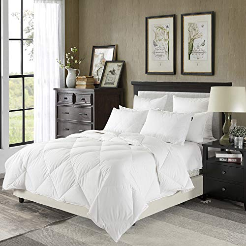 downluxe Lightweight Down Comforter(Queen,White)-Summer Weight Down Duvet Inserts,230 Thread Count 550+ Fill Power,100% Cotton Shell Down Proof with Tabs (Best Queen Size Comforters)