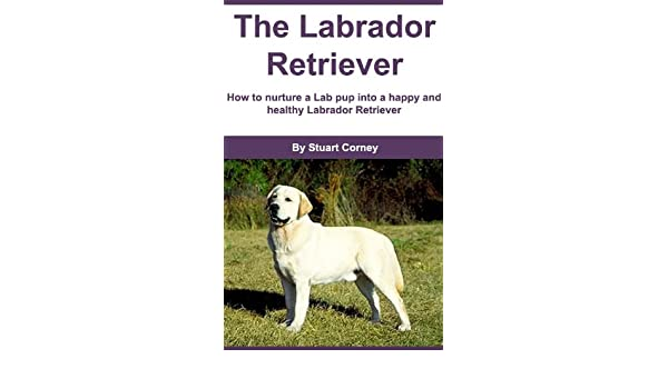 The Labrador Retriever: How to nurture a Lab pup into a happy and healthy Labrador Retriever