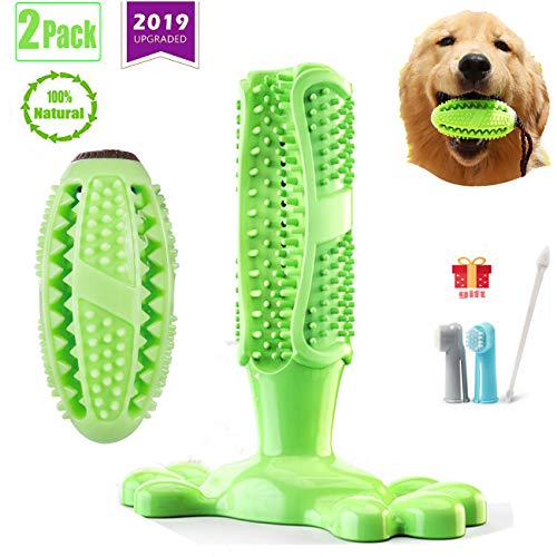 Whispex 2 Pack Dog Chew Toothbrush. 2019 Upgraded Dog Toothbrush Chew Toys.Two, Suitable for All Kinds for Small, Medium and Large Dogs.
