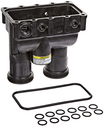Pentair 77707-0206 Manifold Body with O-Ring Replacement Sta-Rite Max-E-Therm Pool and Spa ()