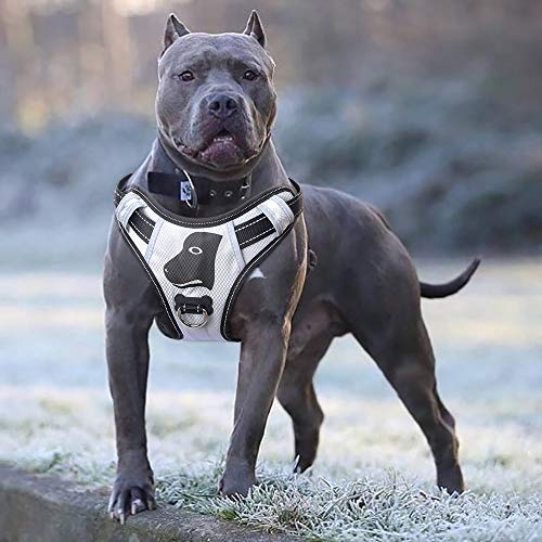 (Babyltrl Silver Big Dog Harness No-Pull Anti-Tear Adjustable Pet Harness Reflective Oxford Material Soft Vest for Large Dogs Easy Control Harness (Large, Silver))