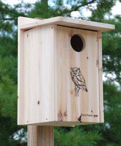 BestNest Premium Screech Owl/Kestrel House - Owl Nesting Box