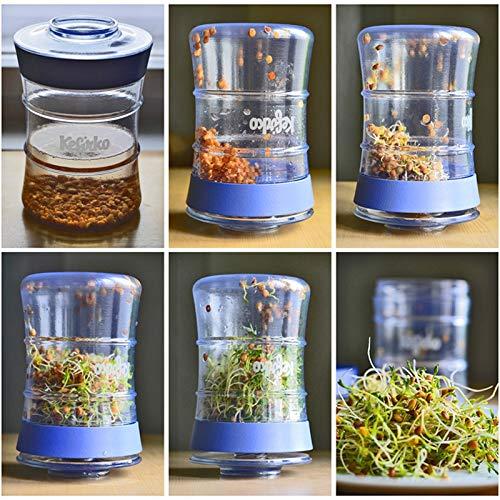 Kefirko - El set ideal para hacer kéfir de leche o kéfir de agua en casa (848ml) BPA free: Amazon.es: Jardín
