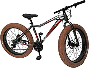 Fat Tyre Mountain Bikes 26 inch 21 Speeds .Equipped With Shimano Gears,Disc Brake,Gery