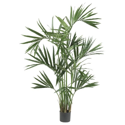 Nearly Natural 5308 Kentia Palm Silk Tree, 6-Feet, Green ()