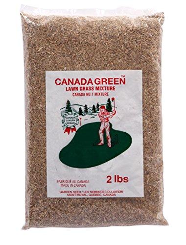 Canada GreenTM Grass Seed ()