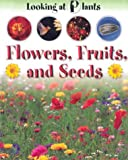 Flowers, Fruits and Seeds, Sally Morgan, 1931983100