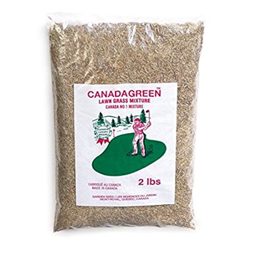 Canada Green Grass Lawn Seed-4 Lbs. Bag ()