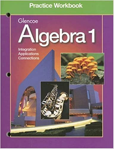 Algebra 1 Workbook McGraw Hill Glencoe 9780028248585