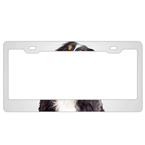 Novelty Auto Truck Car Front Tag Custom Aluminum Metal License Plate Frame Cover 12 x 6 Inch