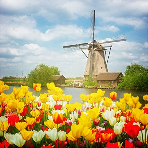 CSFOTO 4x4ft Background for Dutch Windmill Over Tulips Field Photography Backdrop Holland Beautiful Blossom Flower Park Garden Rural Tour Travel Holiday Resort Photo Studio Props Wallpaper
