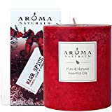 Aroma Naturals Holiday Essential Oil Scented Pillar Candle, Orange, Clove and Cinnamon, Warm Spice, 3 inch x 3.5 inch