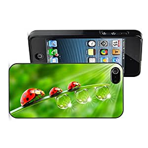 Apple iPhone 6 6s Hard Back Case Cover Ladybug Family on Grass with Waterdrops (Black)