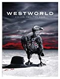 Westworld: Season 2: The Door (DVD)