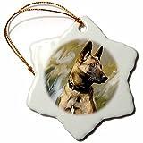 3dRose LLC belgian Malinois 3-Inch Snowflake Porcelain Ornament
