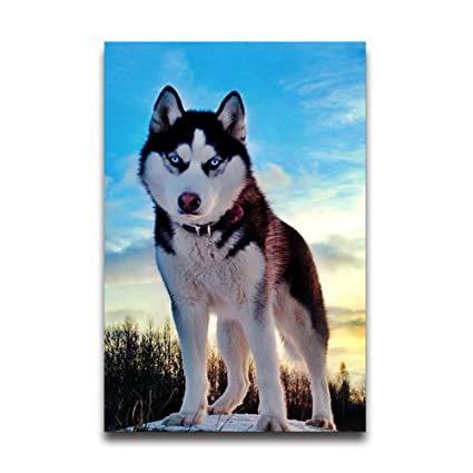 Amazon Com Cute Cool Funny Siberian Husky Pet Dog Decorative