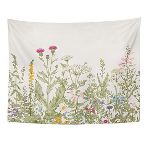 TOMPOP Tapestry Vintage Floral Border Herbs Wild Flowers Botanical Engraving Style Colorful Field Vegetation Home Decor Wall Hanging Living Room Bedroom Dorm 60x80 inches