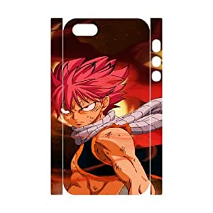 14 iphone 5 5s Cell Phone Case 3D Fairy Tail 91INA91608727