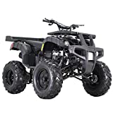 X-PRO 250cc ATV Quad Four Wheelers 250 Utility ATV